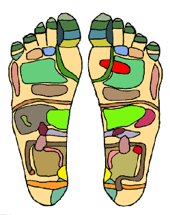 "An example of a reflexology chart, demonstrating the areas of the feet that practitioners believe correspond with organs in the ""zones"" of the body."
